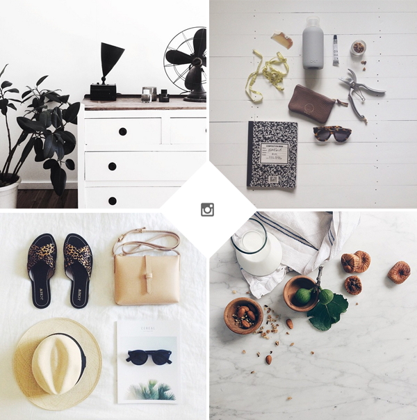 instafollow | blogzilla studio blog
